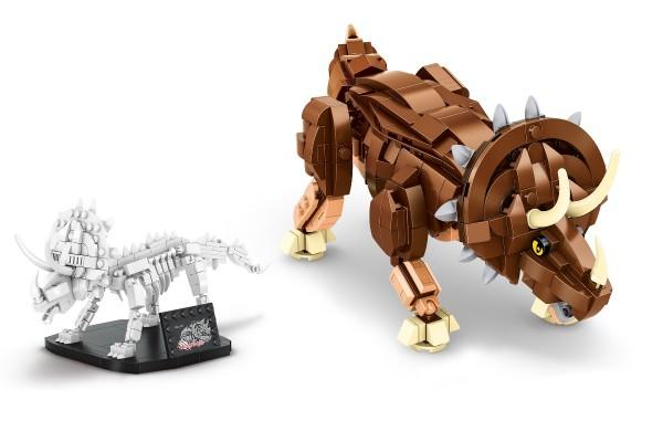 Dinosaurier Set Triceratops inkl. Skelett auf Ständer